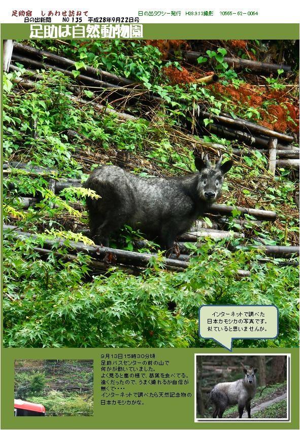 日の出新聞135号.jpg